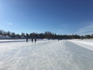 We could not have asked for a bluer sky, nicer ice, or a more beautiful Ottawa day
