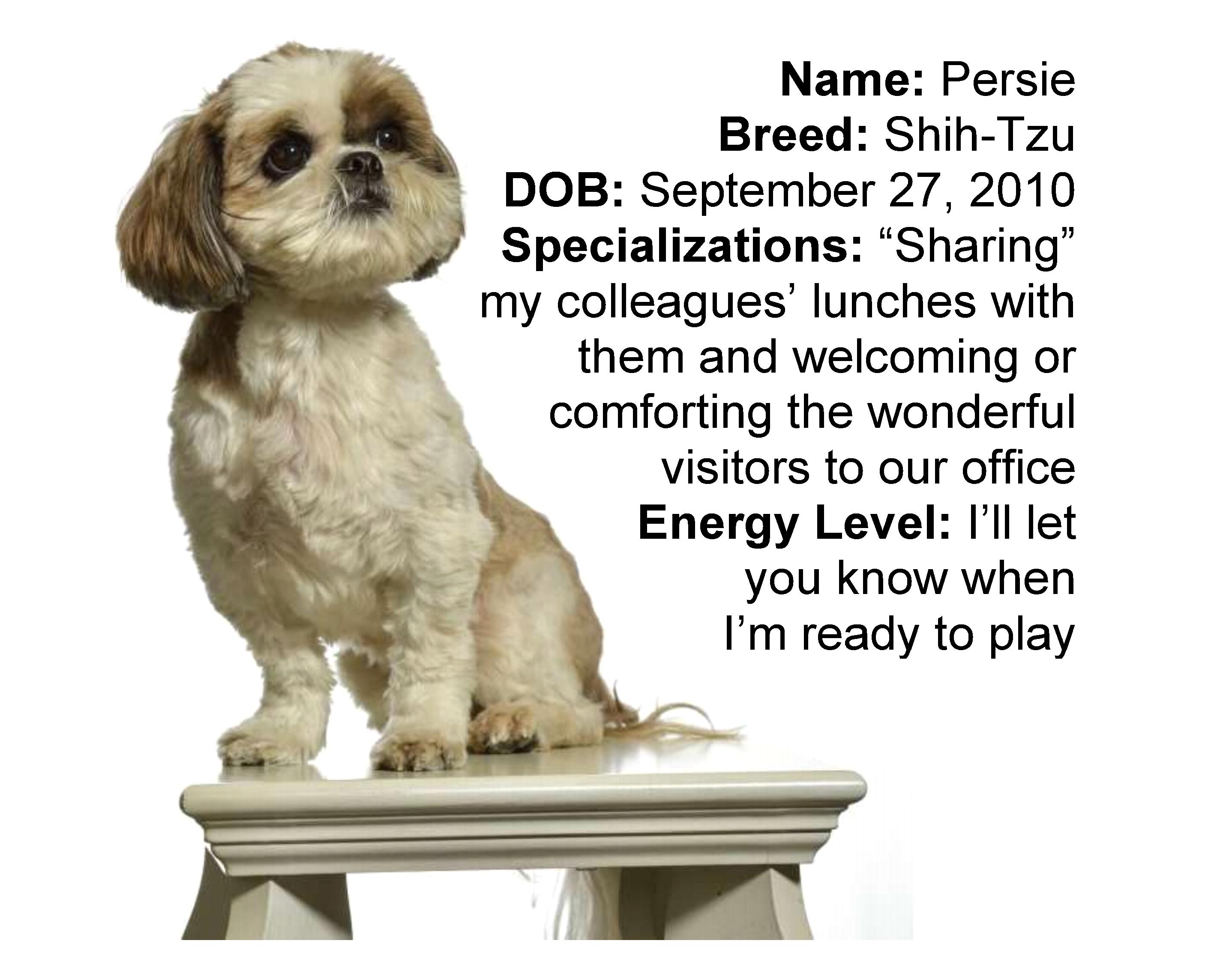 Persie-webpage1